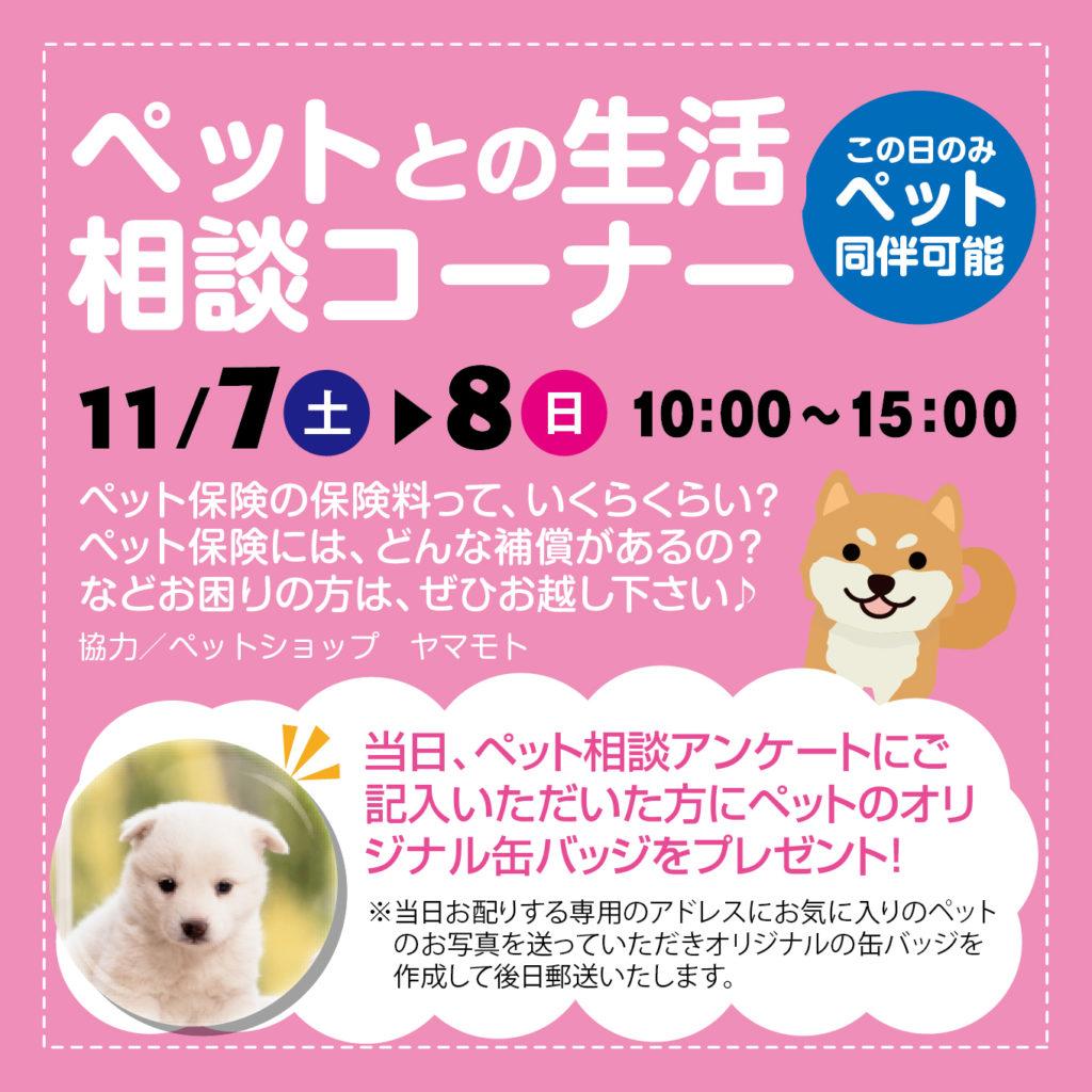 津山イーストランド住宅展示場では11/7(土)8(日)のペット相談アンケートにご記入いただいた方に、ペットのオリジナル缶バッジをプレゼントします🎁後日郵送になります。